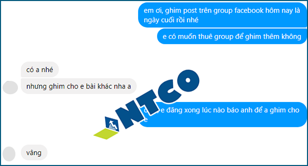 cho thue group