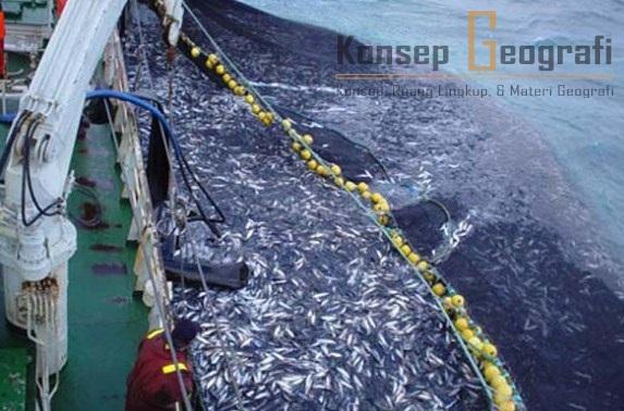 Langkah-langkah Cara Mengatasi Penangkapan Ikan yang Berlebihan