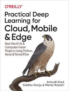 Practical Deep Learning for Cloud, Mobile, and Edge - LunaticAI