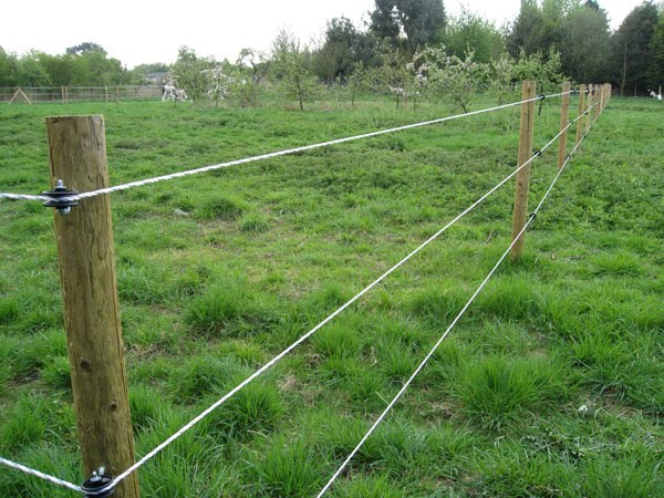 Farm Fencing Explained General Thinking