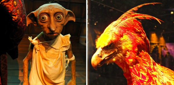 dobby elf harry potter phoenix