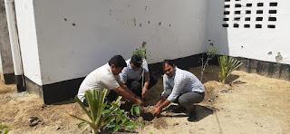 माँ मूर्ति ग्रुप ऑफ प्लांटेशन्स संस्था ने किया वृक्षारोपण  | #NayaSaberaNetwork