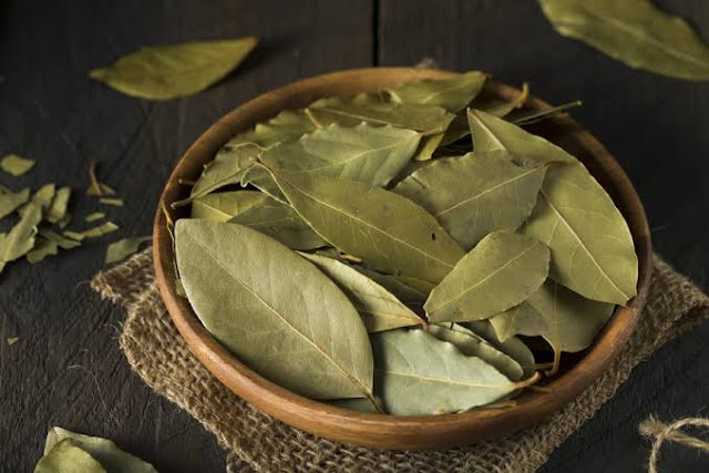 Health Herbs You Should Add To Your Cooking Ingredients