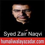 https://humaliwalaazadar.blogspot.com/2019/09/syed-zair-naqvi-nohay-2020.html