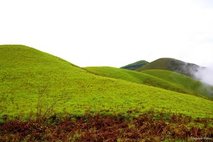 Kudremukh lush green mountains 6