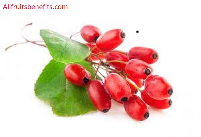 zereshk berries,barberry berries,berberis berries,oregon grape barberry,berberis tangelo