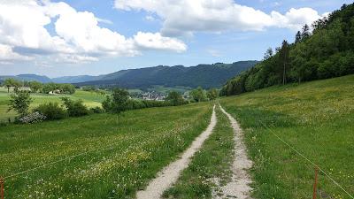 Weg nach Tavannes bei La Chavanne