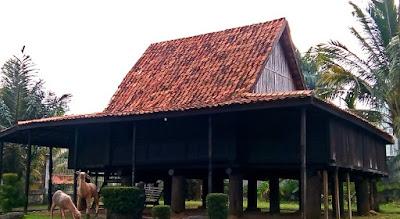 Rumah Adat Sumatera Selatan Beserta Gambarnya
