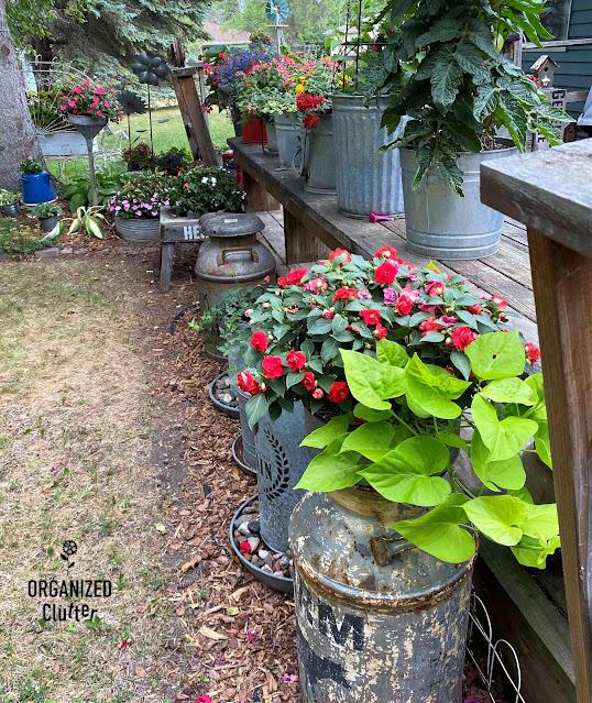Foto dos anuários do deck lateral e decoração de lixo