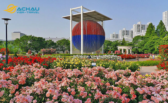 Du lịch Hàn Quốc tháng 5 để trải nghiệm lễ hội hoa hồng đầy thú vị5