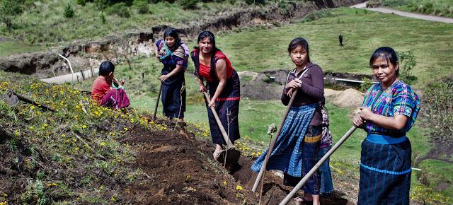 Mujeres agricultoras en Guatemala. UNDP Guatemala/Caroline Trutmann