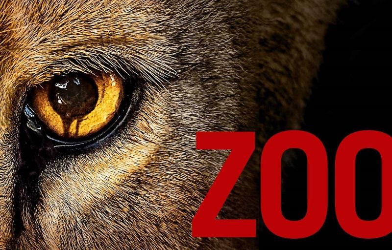 zoo challenge series 2017