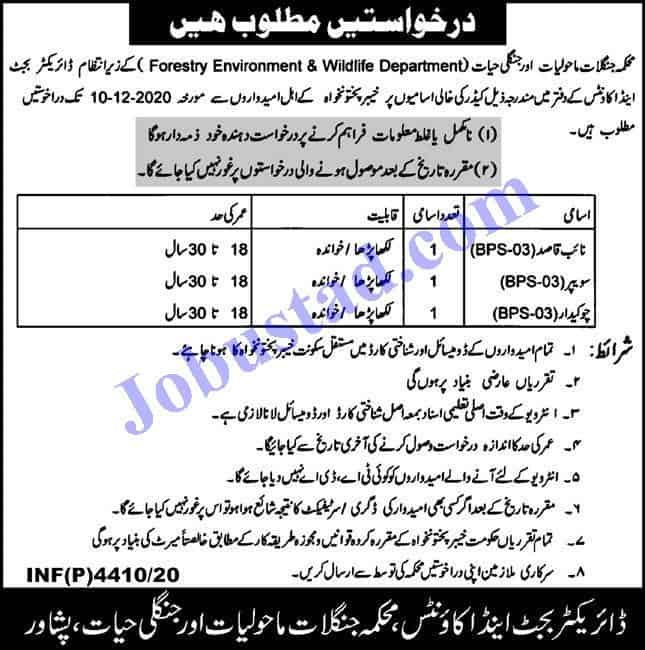 Jobs In Forestry Environment And Wildlife Department Kpk Nov 2020