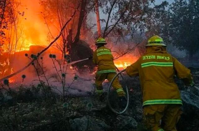 'Kebakaran Hebat Landa Israel, Netanyahu Minta Bantuan Internasional'