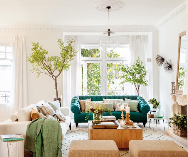 Plante de interior și culori elegante într-un apartament din Madrid