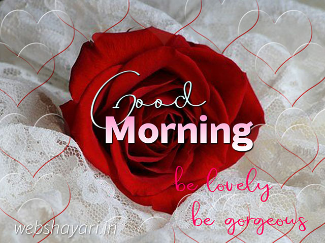 good morning images free download for sharechat  hd download