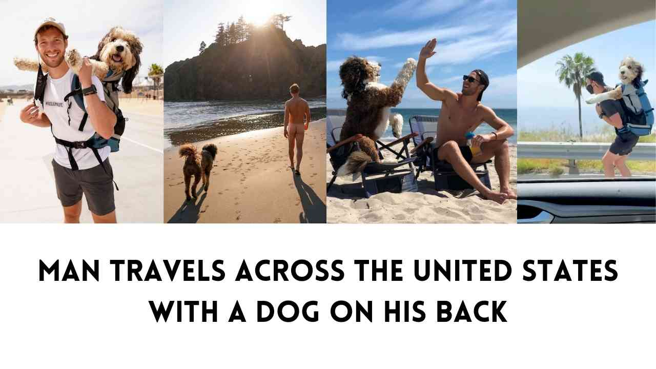 Man Travels Across The United States With A Dog On His Back