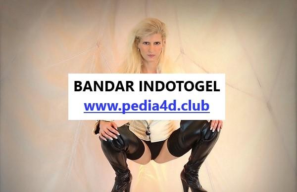 Situs Indotogol Dengan New Program