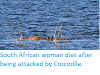 https://sciencythoughts.blogspot.com/2019/10/south-african-woman-dies-after-being.html