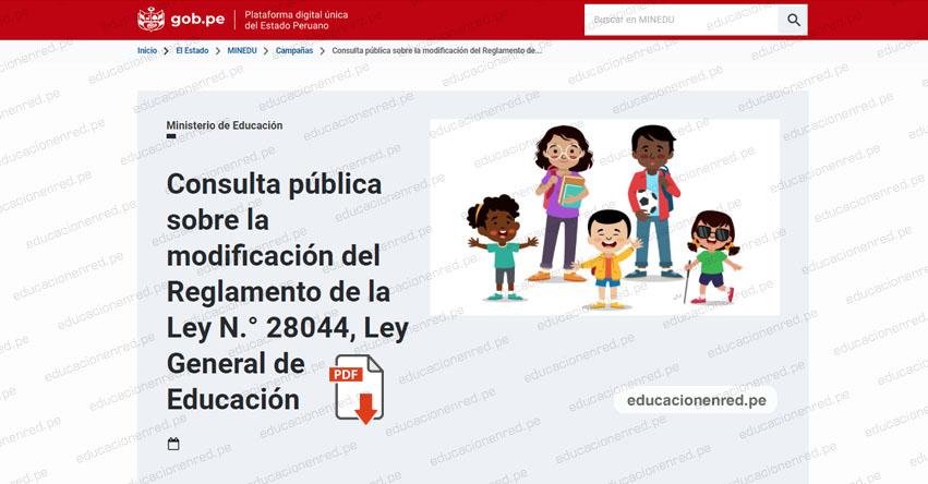 MINEDU pone a Consulta Pública modificación del Reglamento de la Ley N° 28044, Ley General de Educación (R. M. N° 108-2021-MINEDU)