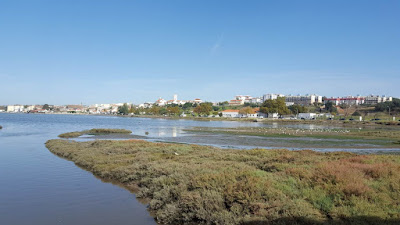 (Almost) Wordless Wednesday - saying goodbye to summer, river photos, Tagus