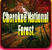 AvmGames Cherokee National Forest Escape Walkthrough