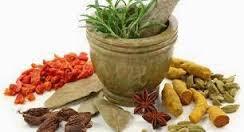 Obat Herbal Ampuh Gatal Gatal Eksim Basah