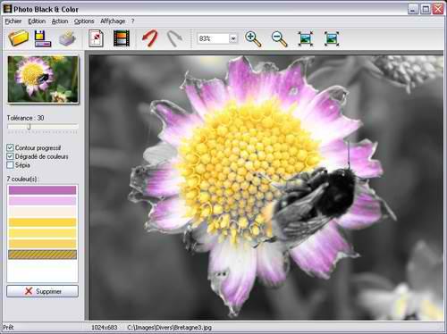 Photo Black and Color - Αφαιρέστε επιλεκτικά το χρώμα από φωτογραφίες