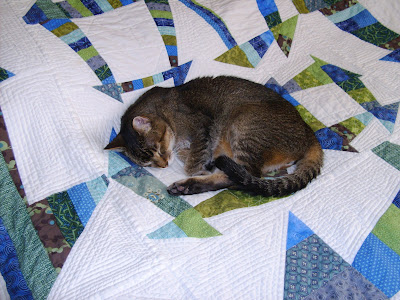 mogli on lcd quilt