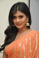 HeyAndhra Hebah Patel Sizzling Saree Stills HeyAndhra.com