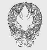 simbolo budista peces de oro