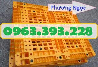 Pallet nhựa, pallet kê hàng, pallet nhựa giá rẻ, pallet nhựa nguyên sinh PL1