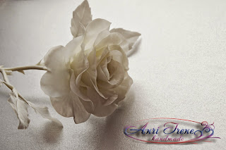 Solid white rose