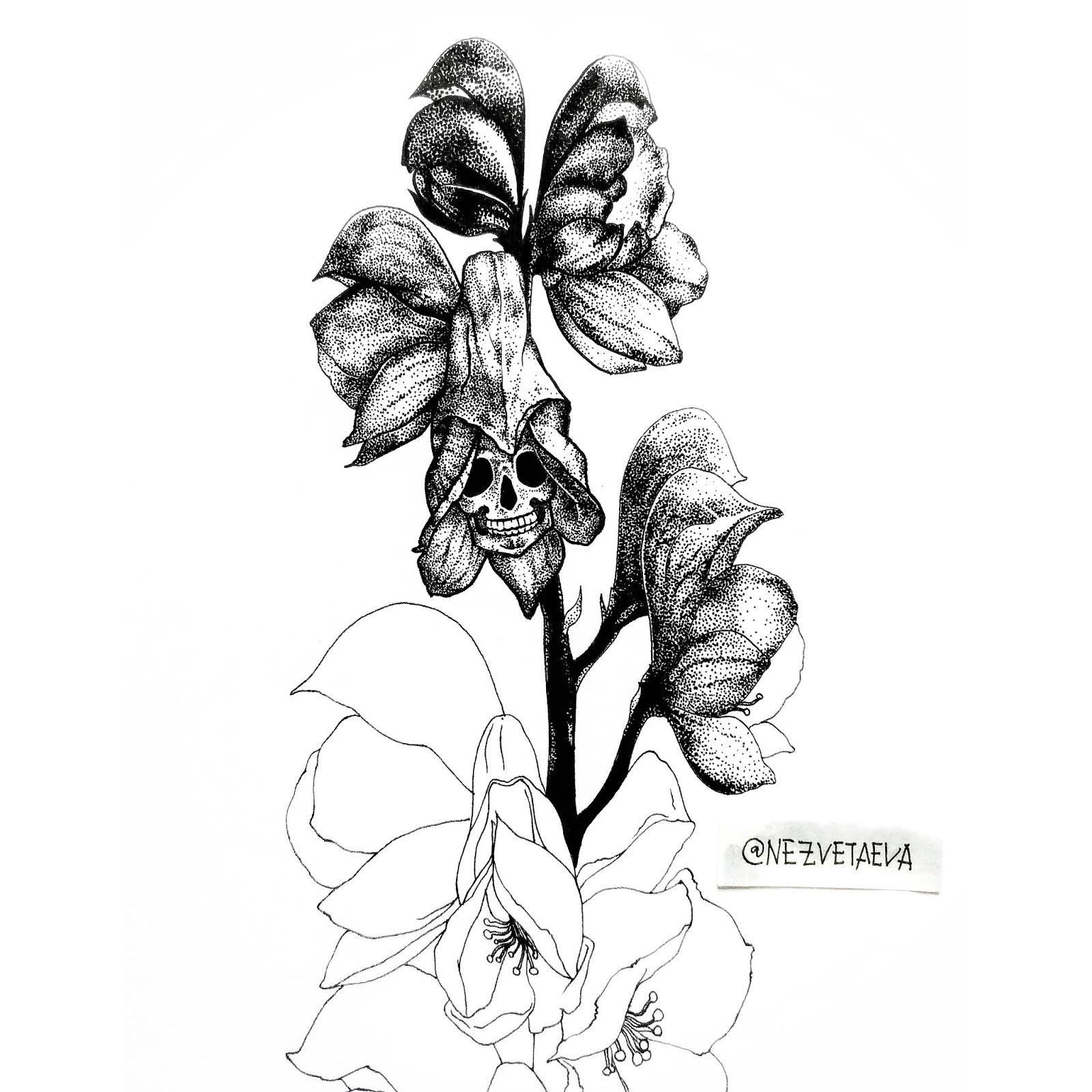 sonia-nezvetaeva-inktober2018-aconitum-dotwork-sketch