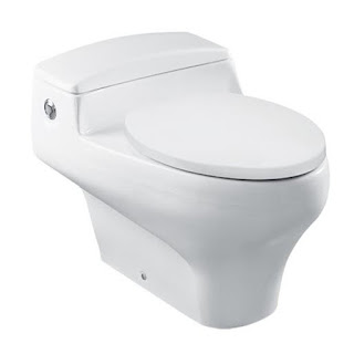 Tutorial Menggunakan Toilet Duduk