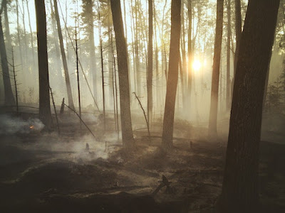 fire debris characterization
