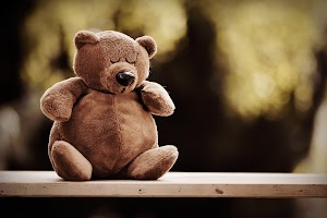 El oso perezoso - Cuento corto infantil con moraleja