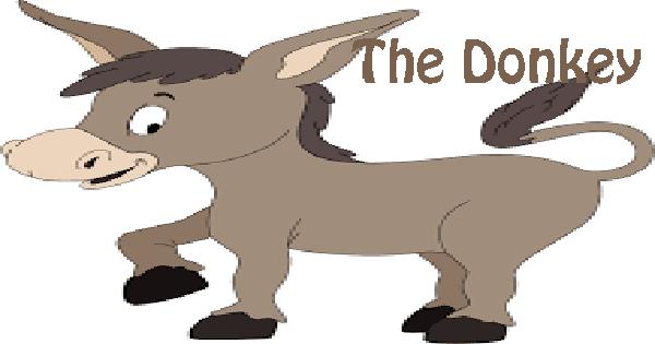 essay on donkey