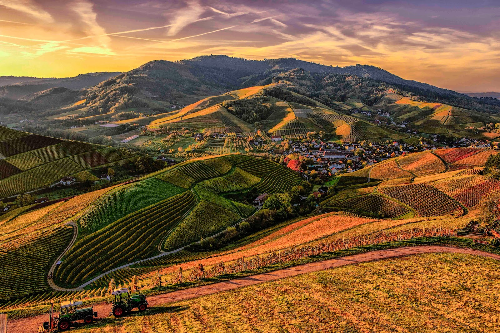 4k Wallpaper Agriculture Brown and Green Mountain View Photo