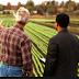 [pdf] Manual de Administração de Agronegócios
