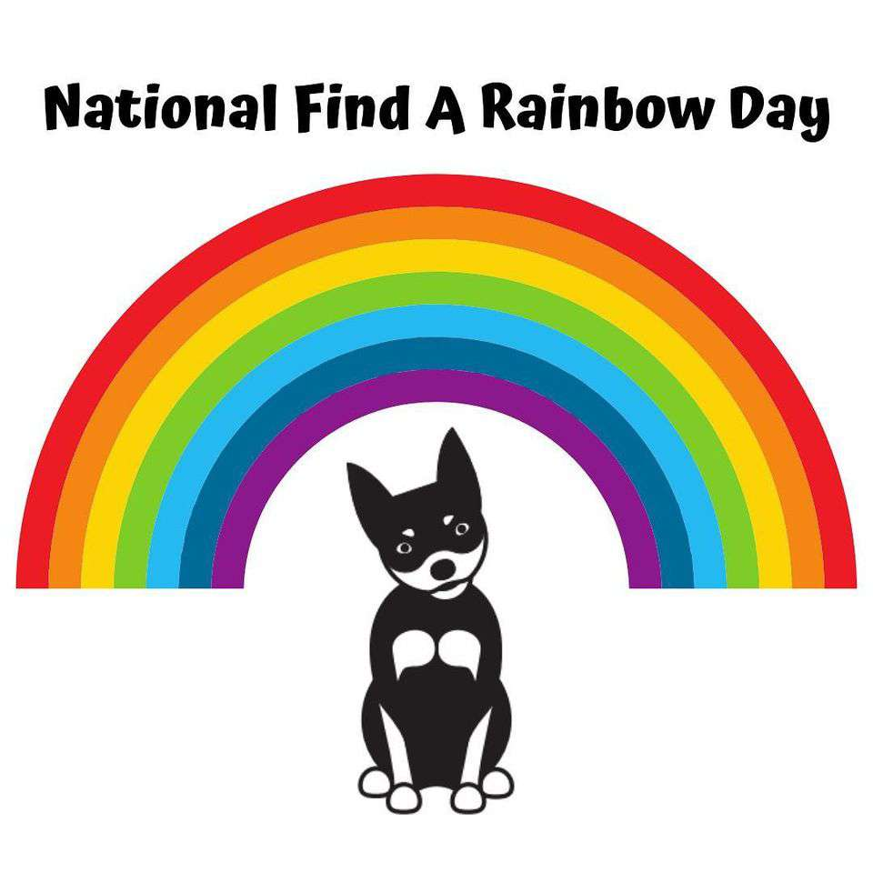 National Find a Rainbow Day Wishes Pics