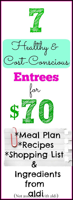 Meal Plan and Recipes for 7 Economical and Healthy Entrees