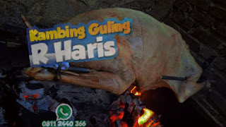 Rekomendasi Kambing Guling Kota Bandung !, kambing guling kota bandung, kambing guling bandung, kambing guling,