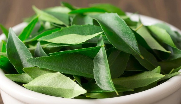 What are the benefits of curry leaves