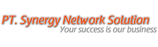 Lowongan Kerja PT Synergy Network Solution