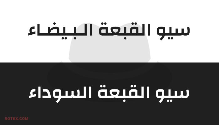 سيو القبعة السوداء وسيو القبعة البيضاء