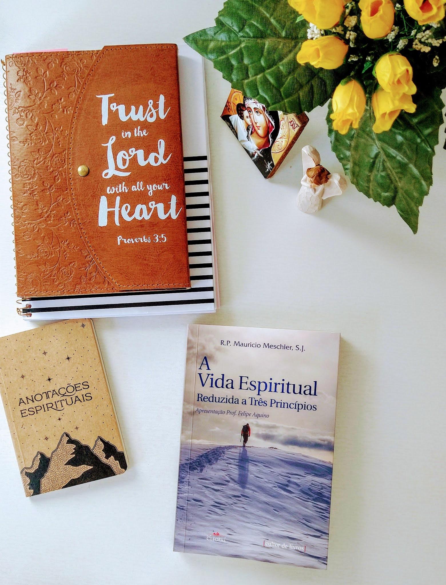 Resenha: A vida Espiritual Reduzida a Três Princípios (Padre Maurício Meschler)