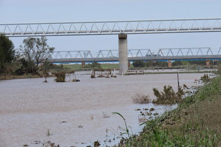 江戸川増水後4日目3