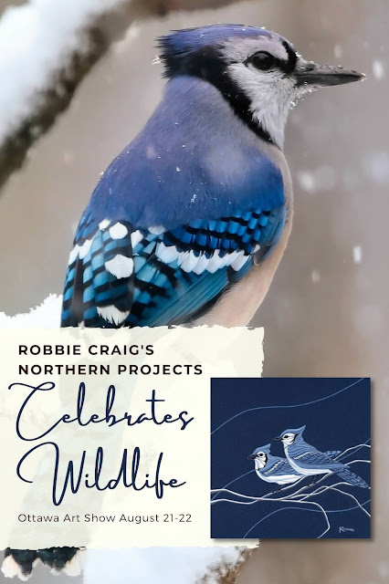 Ottawa Event: Robbie Craig's Northern Projects Art Show August 21 and 22