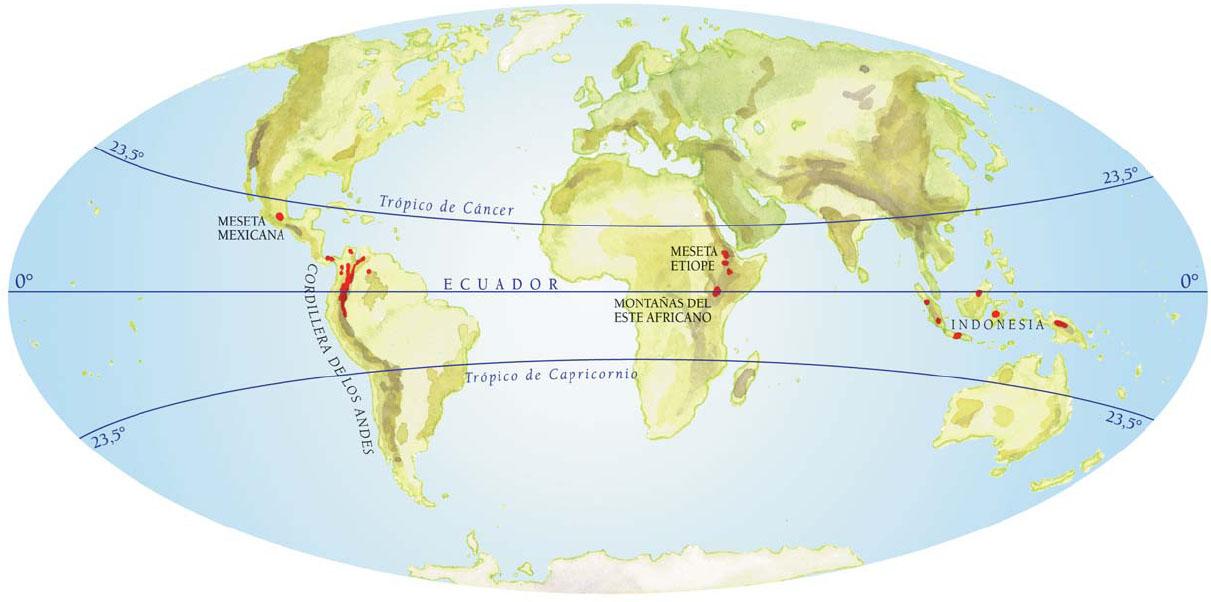Trópico de Capricórnio ou Zona Tropical Sul